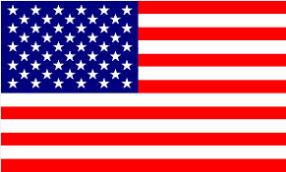 bandera Estados Unidos beruby
