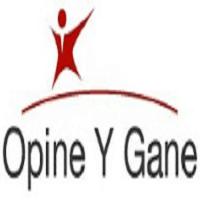 Opine y Gane, Encuestas Remuneradas por Internet